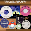 USA ROCK N ROLL INSTRO OBSCURITIES VOL 17 - CD - STYLUS