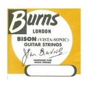 STRINGS - BURNS - 012 -.052