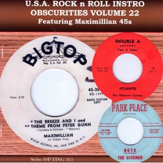 USA ROCK N ROLL INSTRO OBSCURITIES VOL 22 - CD - STYLUS