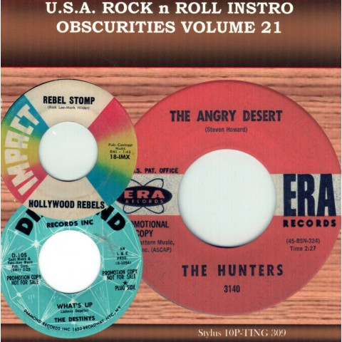 USA ROCK N ROLL INSTRO OBSCURITIES VOL 21 - CD - STYLUS
