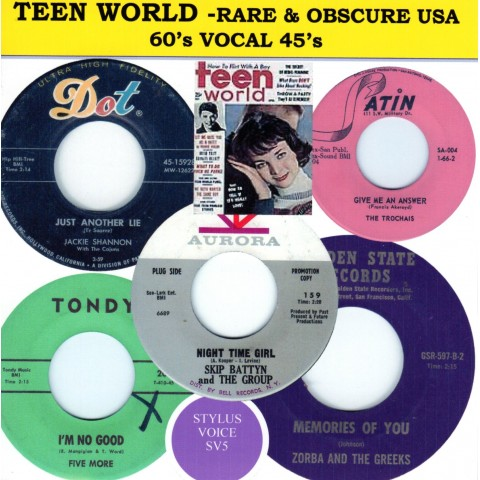 TEEN WORLD - RARE OBSCURE USA 60S VOCAL 45s - CD