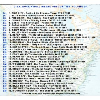 U.S.A. ROCK n ROLL INSTRO OBSCURITIES VOLUME 25 - CD - STYLUS